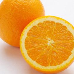 シリコン製・オレンジスクイーザーオレンジ