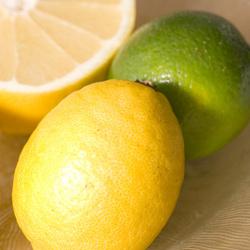 シリコン製・レモンスクイーザーレモンやライムなど柑橘類が搾れます