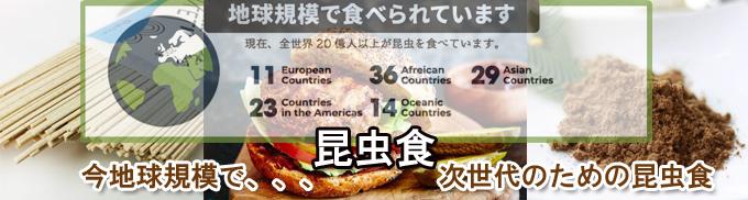 6個セット 昆虫食 エナジーバー Eat Grub bar ブルーベリー&アーモンド 昆虫 食用 入門